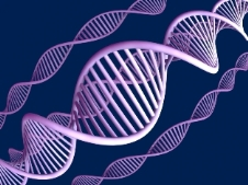 DNA Strand as Storage device